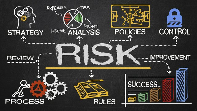 Why Do Businesses Need Risk Management Services?q