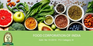 E- Tender for Chartered Accountant for Internal Audit of Food Corporation of India