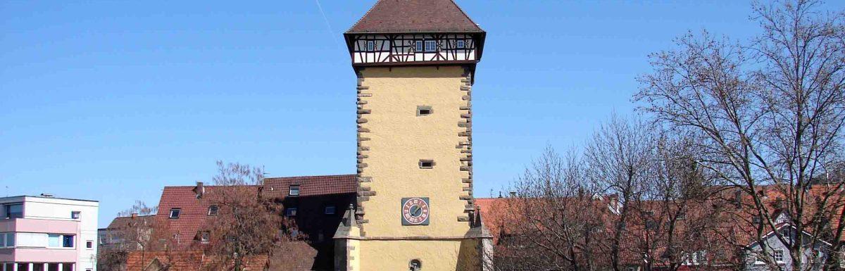Study International Business at Reutlingen University Tuition Free