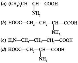 Chemistry MCQs for Class 12 with Answers Chapter 14