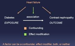Epidemiology Lecture 10 - Effect Modification   StudyHippo.com