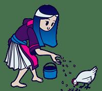 Hmong woman feeding chicken
