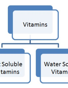 also vitamins ppt pdf powerpoint presentation rh studymafia