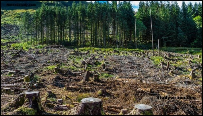 deforestation, problems of Indian Soils, Indian Soil complete notes