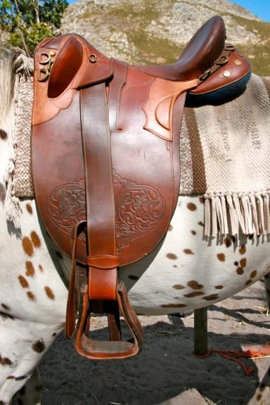 Australian Saddle