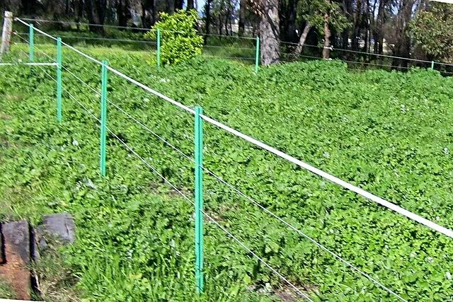 A portable electric fence can be used to contain a variety of pets, livestock and wildlife