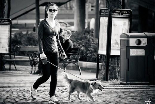 walking the dog reduces obesity in people and pets