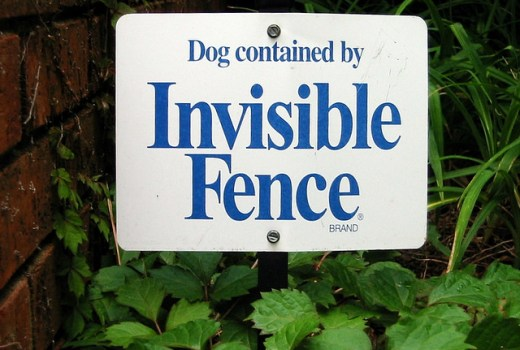 Wireless pet fence