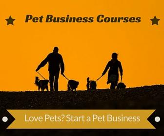 Pet Care Business Courses