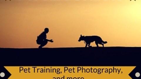 Pet Care Courses