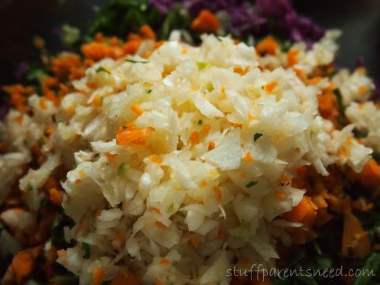 bok choy slaw ingredient: onion
