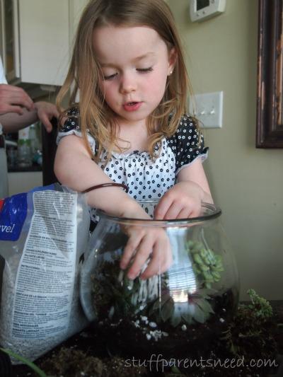 how to make a terrarium: add rocks