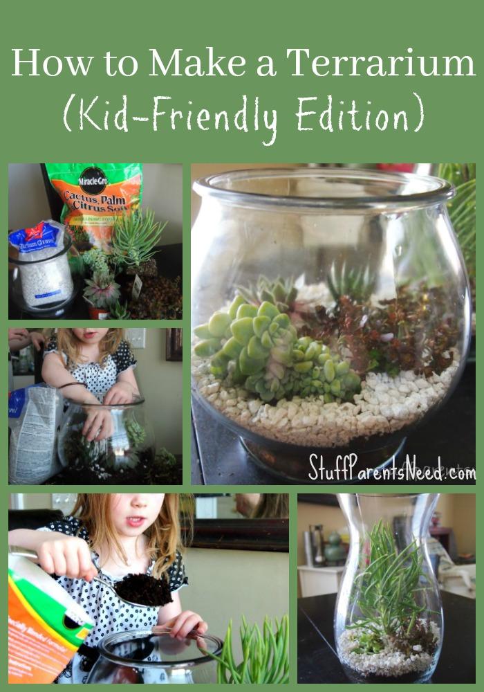 terrarium for kids