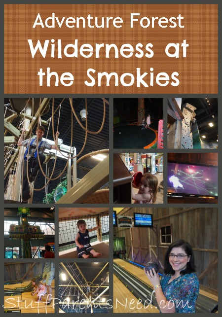 wilderness at the smokies adventure forest