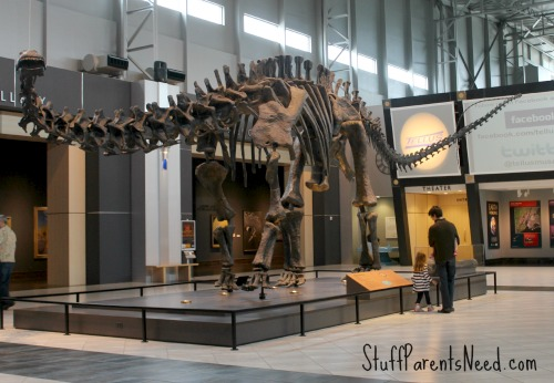 tellus museum 2