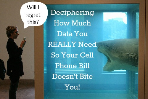 my data manager cell phone bill