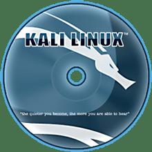 kali linux security