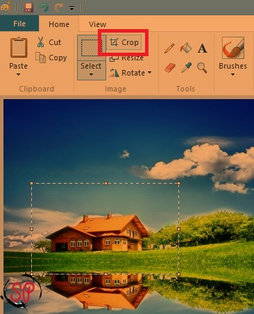 how to crop in paint