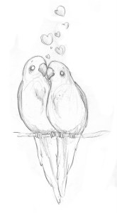 love birds easy things to draw