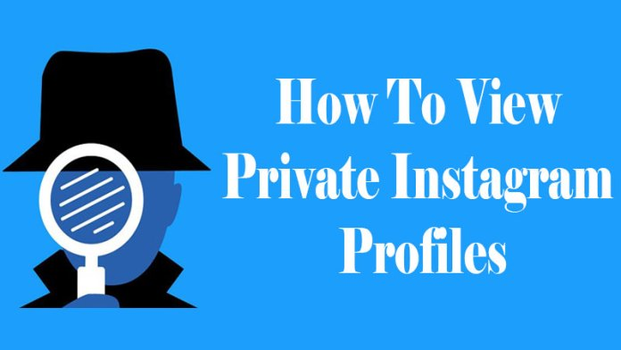 how to view private instagram account