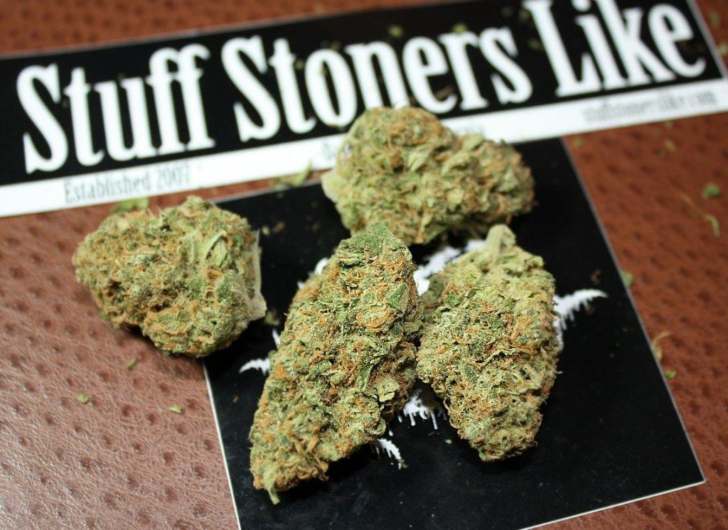 jack herer cannabis