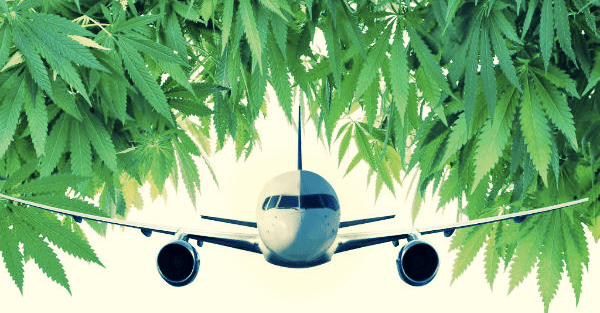 how to travel with weed