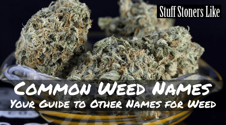 Common Weed Names