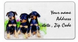 dobermand puppies address labels