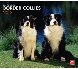 Border Collies 2013 Wall Calendar
