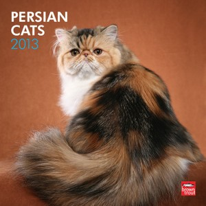 Persian Cats 2013 Wall Calendar