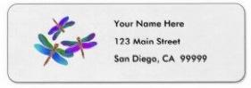 Dragonflies Address Labels