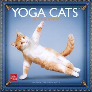 Yoga Cats 2013 Wall Calendar