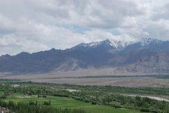 Ladakh Verdant Valley