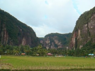 Fields - Minangkabau