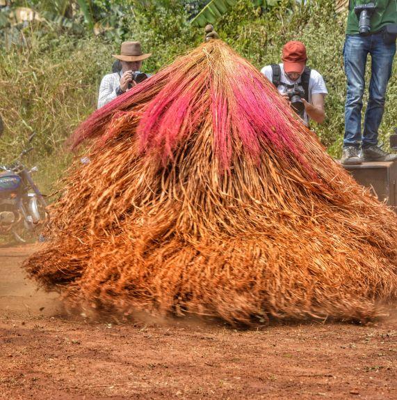 Zangbeto - Allada Festival