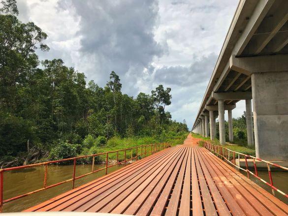 Port Gentil to Iguela, Loango National Park, Gabon