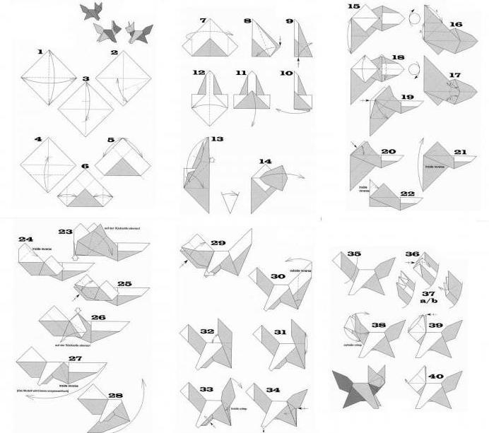 Magic origami for children