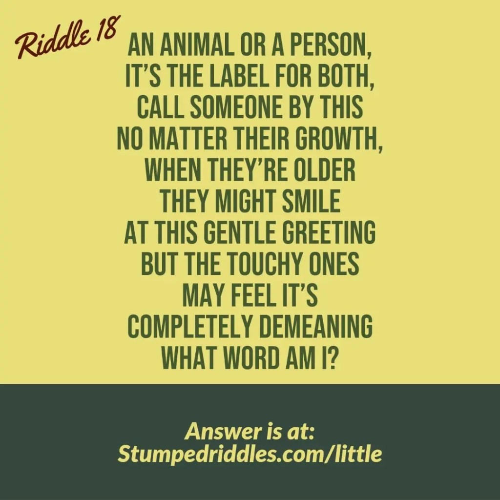 Riddle 18 at StumpedRiddles.com
