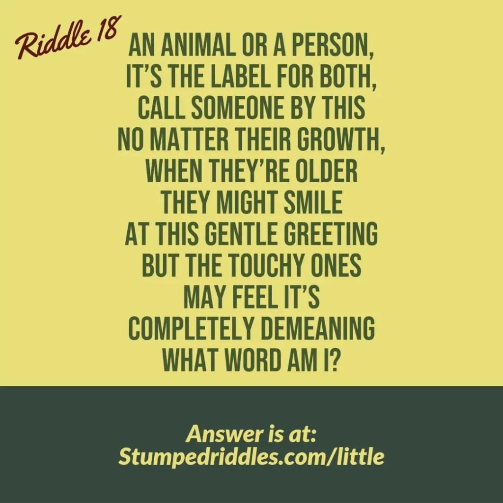 Riddle 18 on Stumpedriddles.com