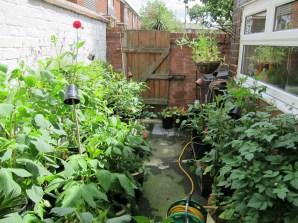 2014 Garden 3