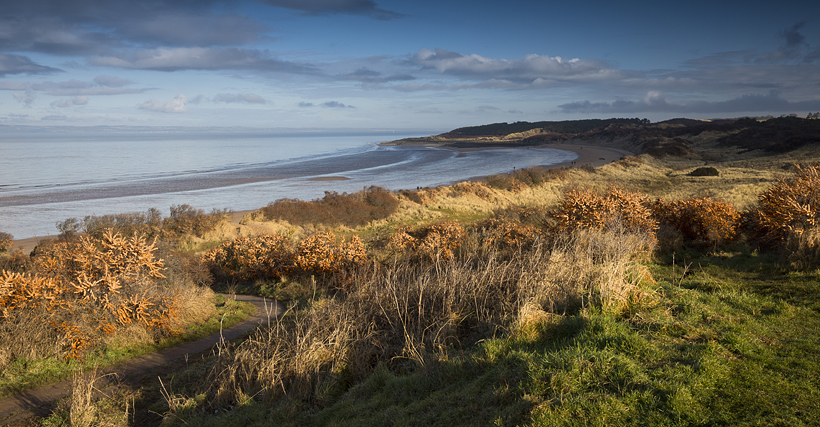 Gullane Bents, East Lothian