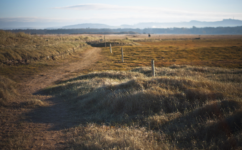 Aberlady Bay path
