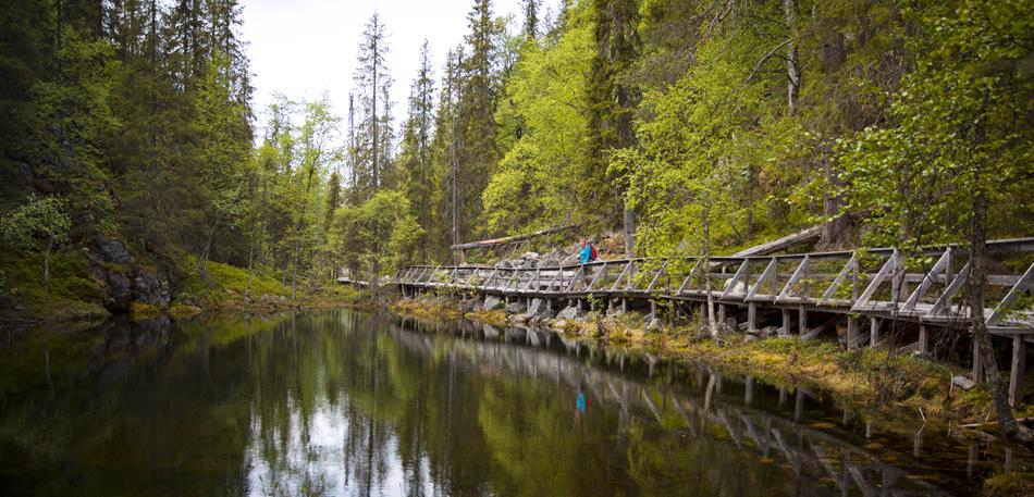Pyha-Luosto National Park