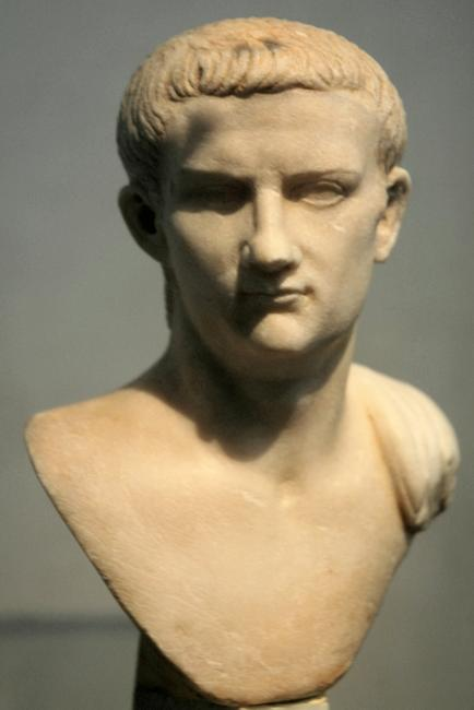 Caligula was a member of the Julio-Claudian Dynasty.