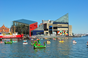 The Baltimore National Aquarium designed by Peter Cermayeff of Cambridge Seven Associates. Saved from en.wikipedia.org.