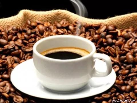 Vài nét về nguồn gốc cà phê