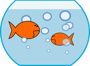 Gold Fish need you to use copy editing tools to keep their attention
