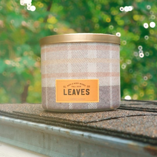 """The Bath & Body Works 3-Wick """"Leaves"""" Candle, up against a pretty leafy background."""