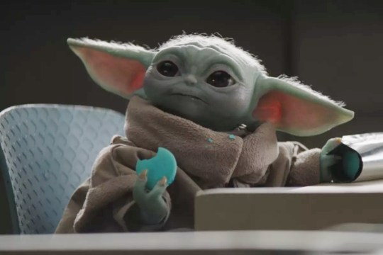 Baby Yoda/Grogu with a cookie