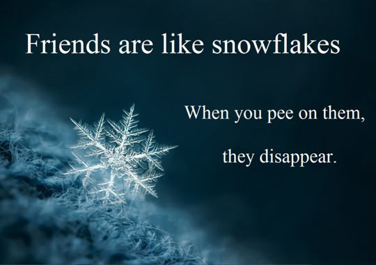 snowflake-friends
